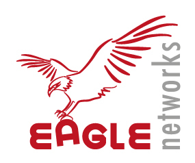 EagleNetworks Security Division of Blue Eagle Technology
